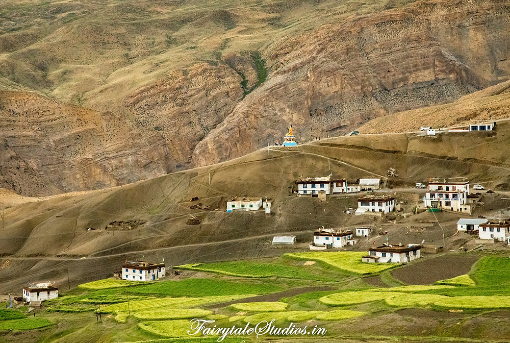 Langza village in Spiti Valley surrounded by green fields - Himachal Pradesh, India
