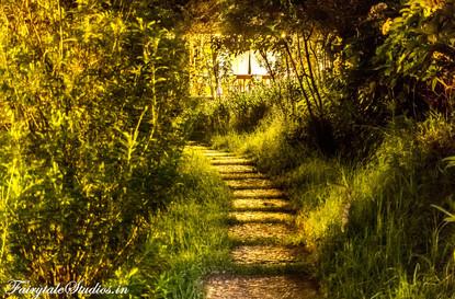 Night_Fern Creek Kodaikanal_Fairytale Travels (9)