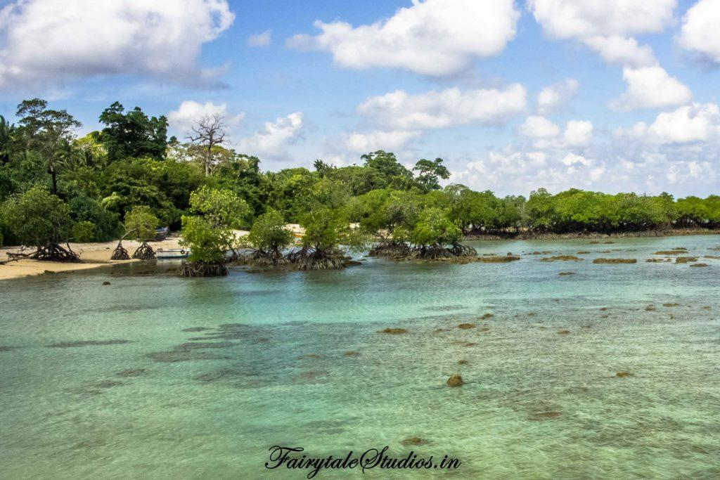 Neil Island Travel Guide_The Andaman Odyssey_Fairytale Travels (7)