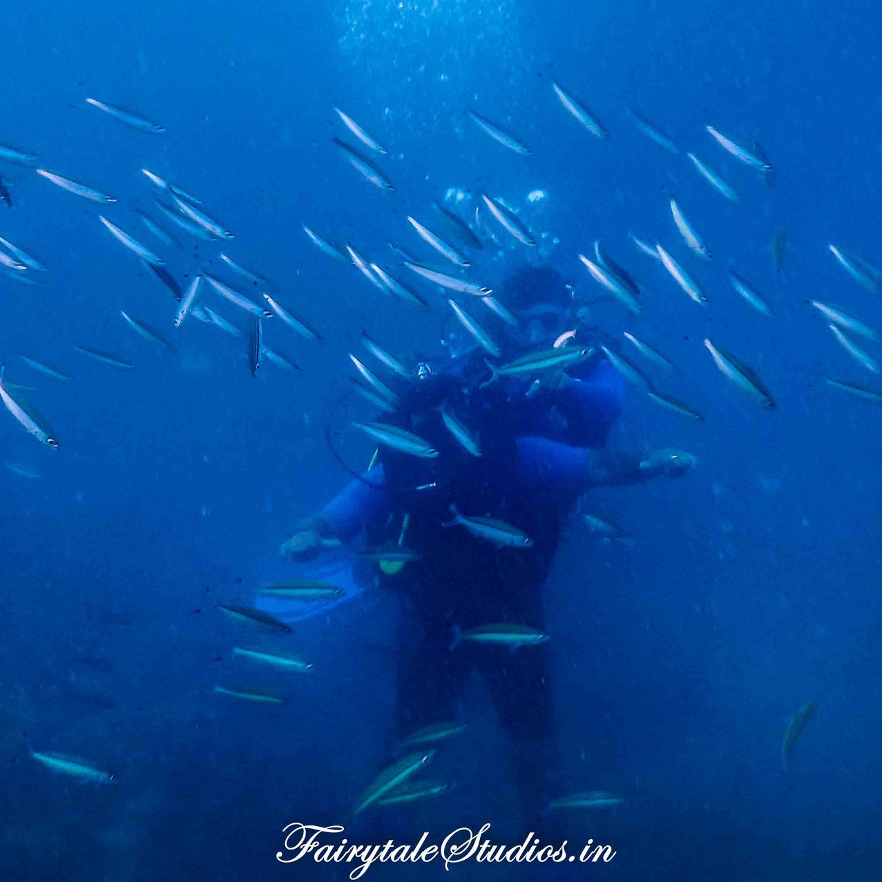 Under water_Scubalov_The Andaman Odyssey_Fairytale Travels (42)