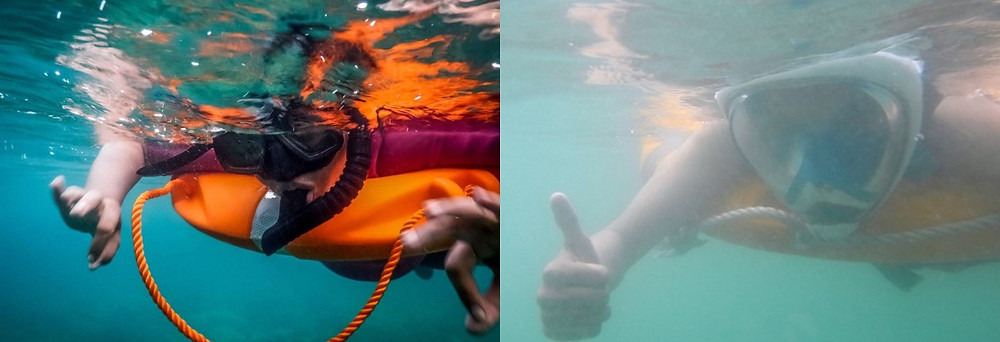 Snorkeling with Scubalov vs Snorkeling at Elephant beach
