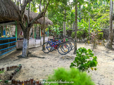Neil Island Travel Guide_The Andaman Odyssey_Fairytale Travels (21)