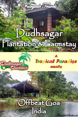 Dudhsagar Plantation farmstay, Goa - India