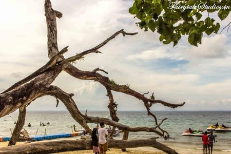 Elephant Beach_Havelock island_The Andaman Odyssey_Fairytale Travels (3)