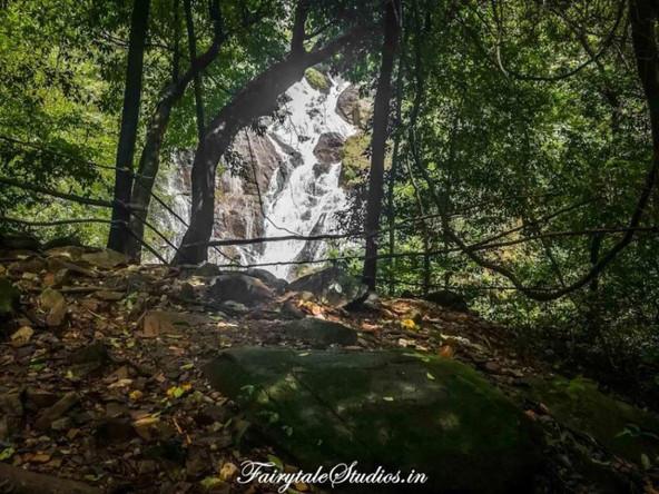 Tambdi Surla Waterfalls_Offbeat Goa_Fair