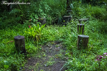 Gardens_Fern Creek Kodaikanal_Fairytale Travels (1)