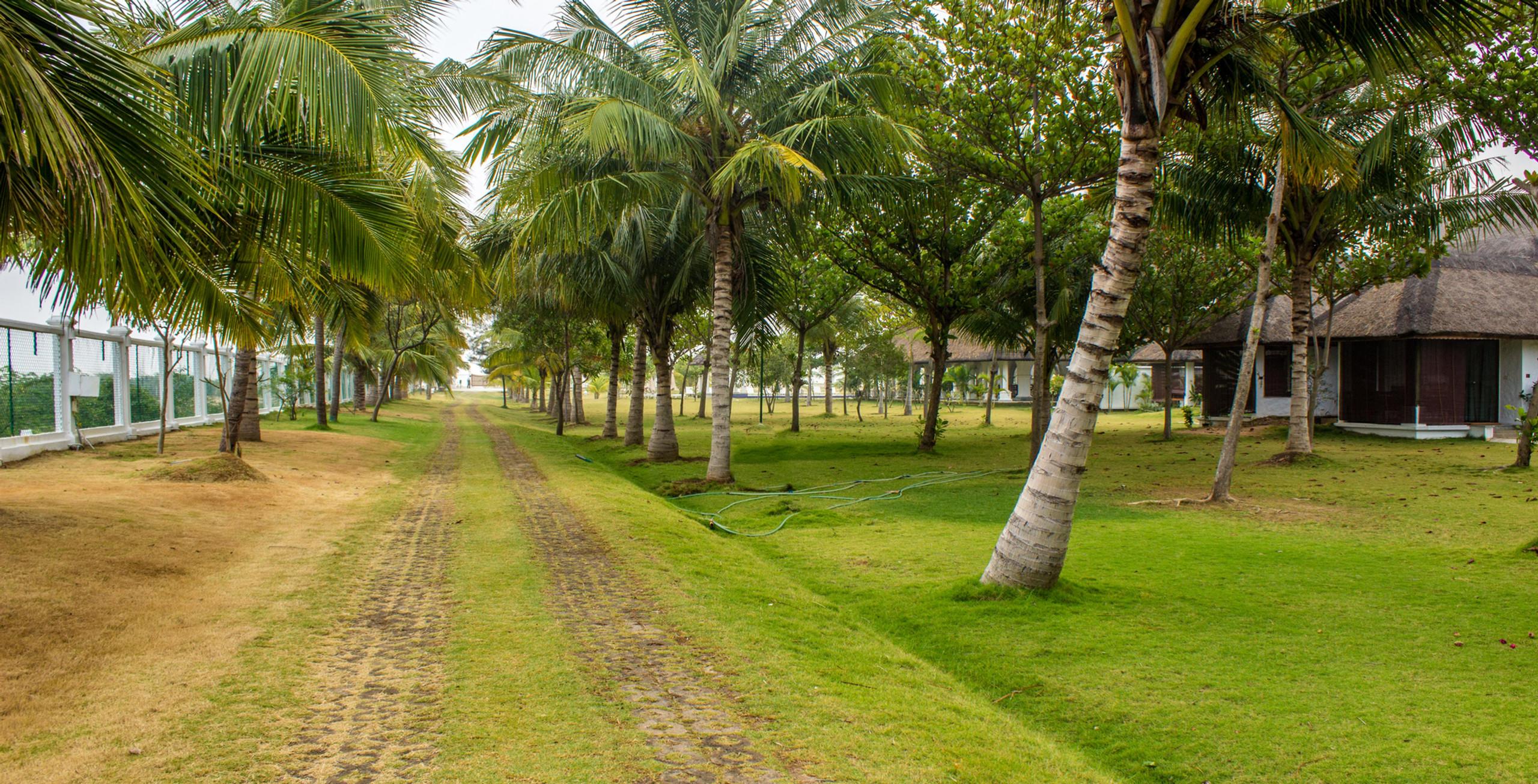 Landscaping_Le Pondy_Fairytale Travel Blog (5)