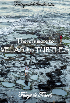 There is more to Velas than Turtles. Read this article to see places to visit in and around Velas