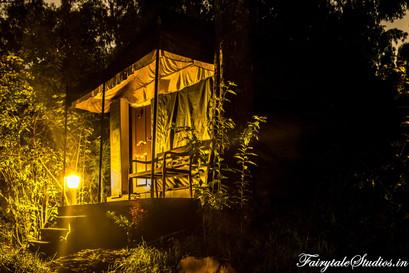 Night_Fern Creek Kodaikanal_Fairytale Travels (7)
