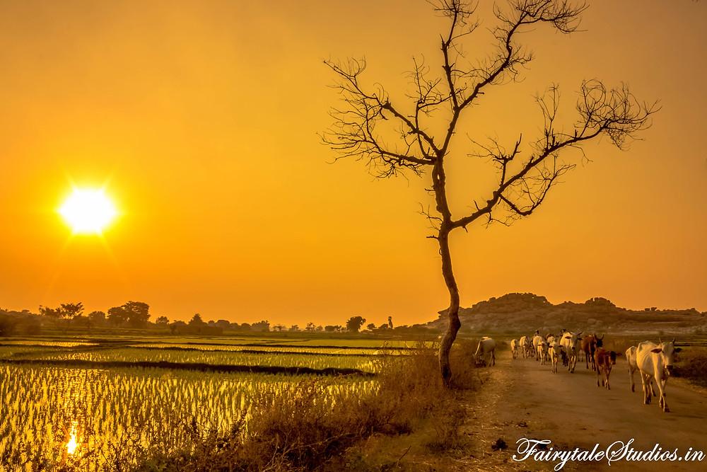 Amazing sunset in Hampi