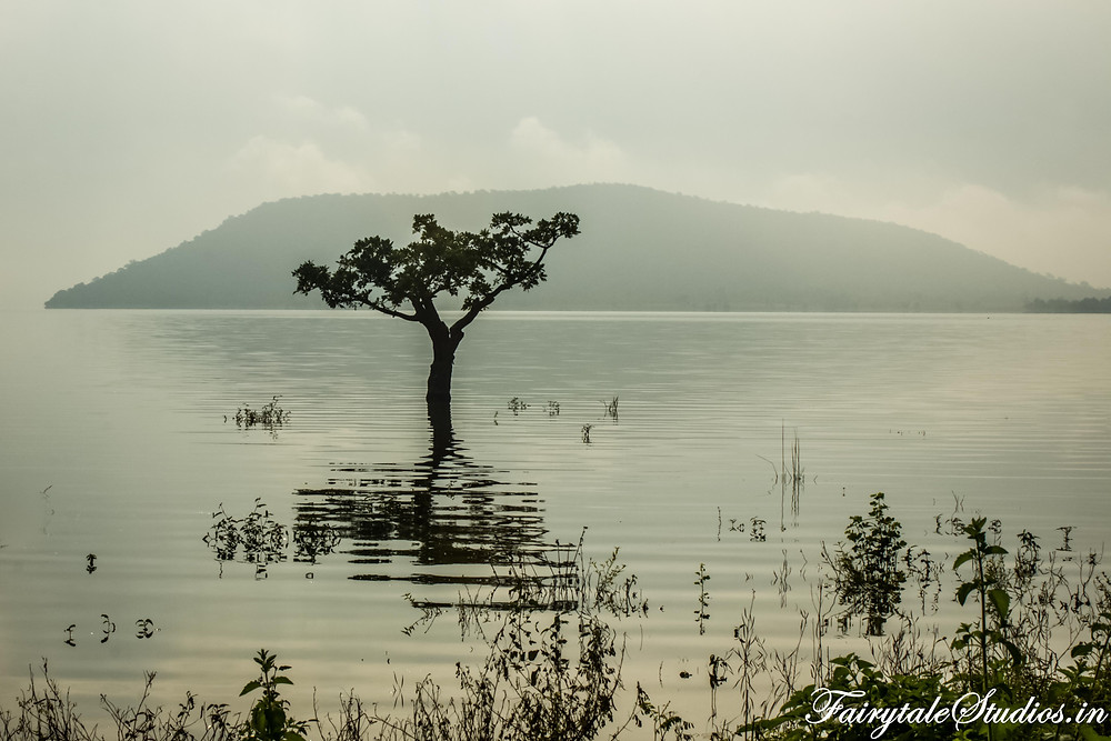 The silent and beautiful pakhal lake near warangal, telangana