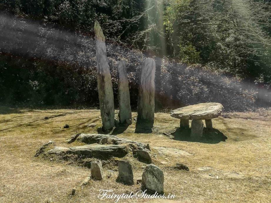 Sacred Grove forest_Mawphlang travel guide_The Meghalaya Odyssey_Fairytale Travels (6)