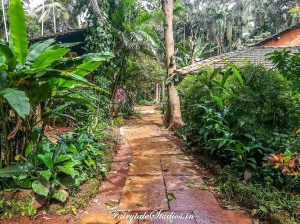 Others_Dudhsagar Plantation Spice farm s