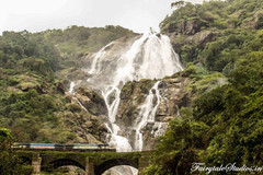 Dudhsagar Falls - Offbeat Goa