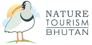 Nature Tourism Bhutan is our recommended Tour operator in Bhutan