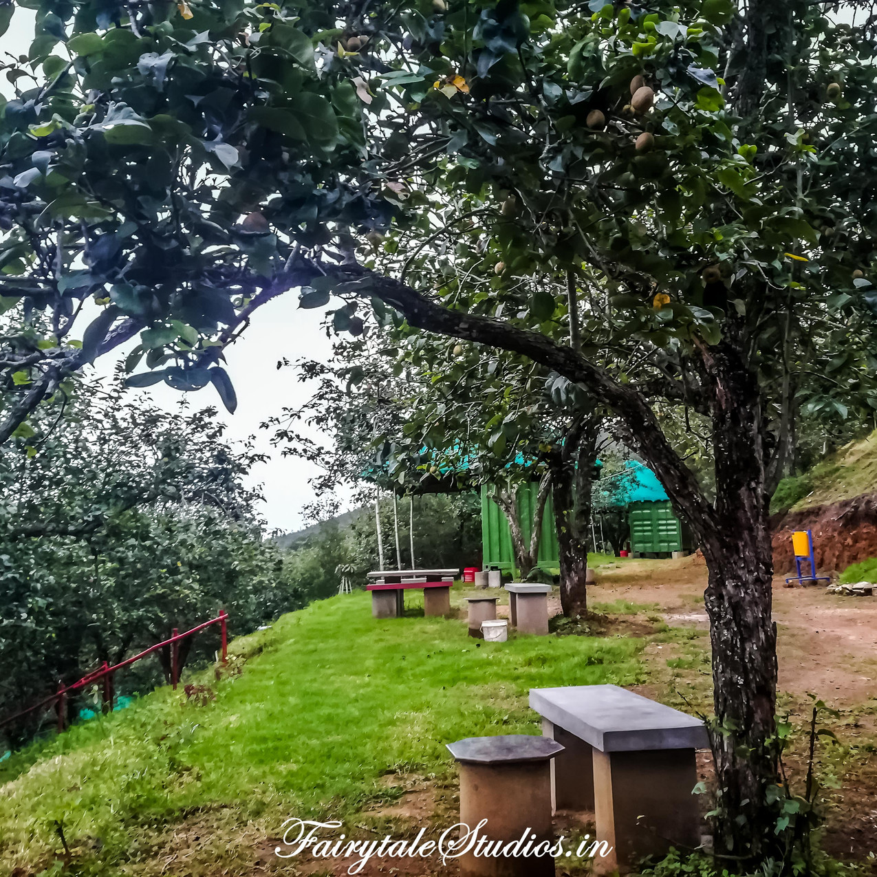 Property_Pear County Kodaikanal_Fairytale Travels (22)