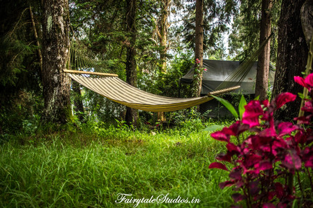 Gardens_Fern Creek Kodaikanal_Fairytale Travels (24)