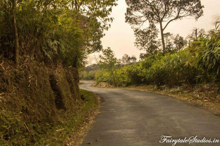 Others_Mawlynnong_The Meghalaya Odyssey_Fairytale Travels (2)