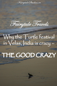 Pin this blog if you liked how we covered the good crazy turtle festival of velas, India