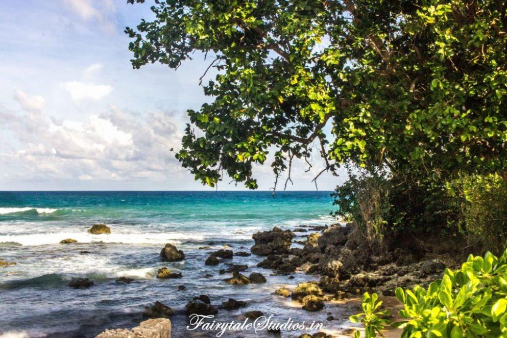 Neil Island Travel Guide_The Andaman Odyssey_Fairytale Travels (14)