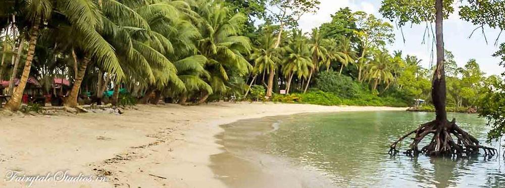 Beautiful curved beach at Havelock Island Beach Resort
