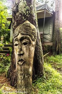 Gardens_Fern Creek Kodaikanal_Fairytale Travels (48)