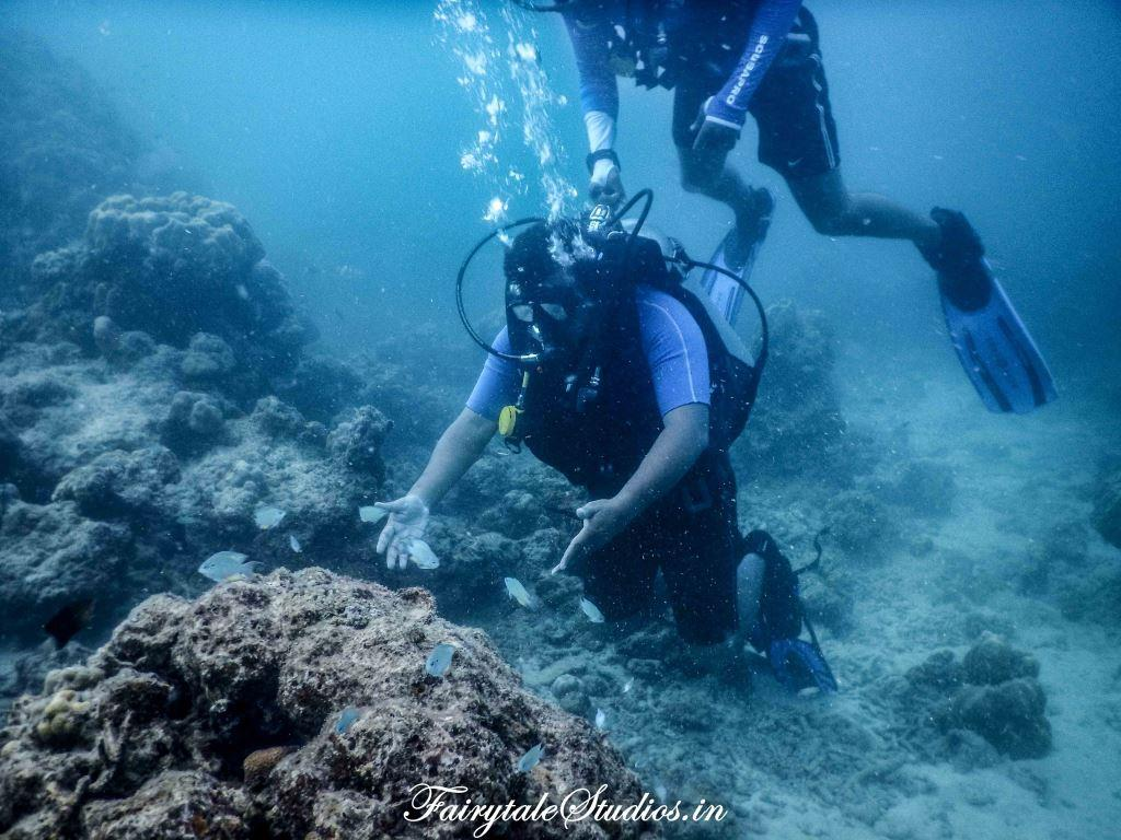 Under water_Scubalov_The Andaman Odyssey_Fairytale Travels (41)
