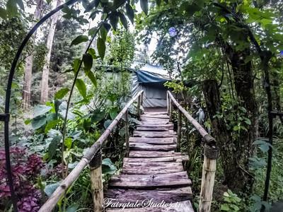 Gardens_Fern Creek Kodaikanal_Fairytale Travels (14)