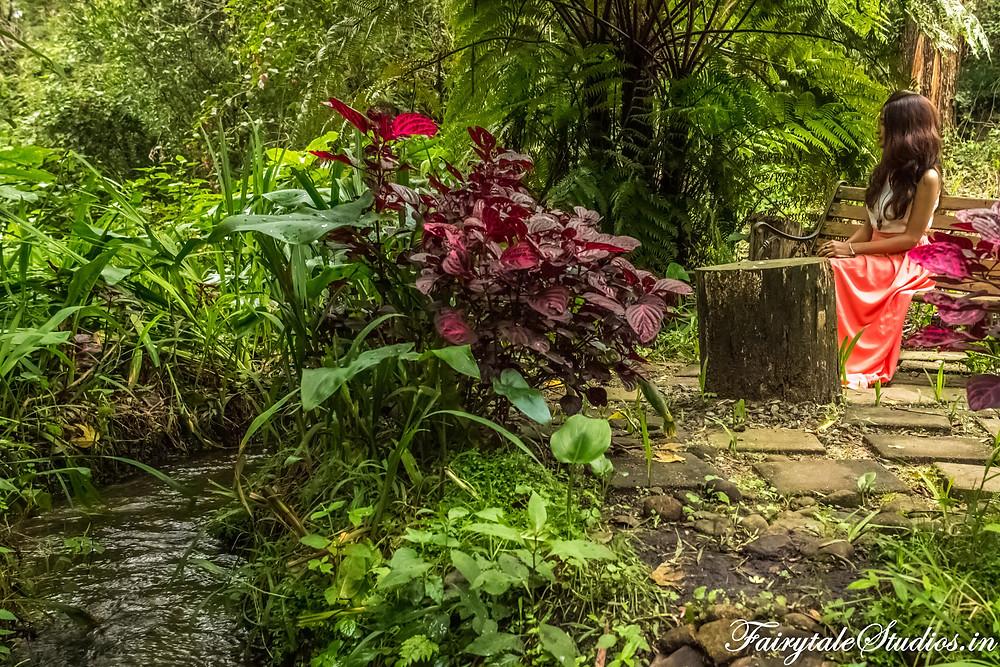 Lush greenery with gurgling water streams @The Fern Creek, Kodaikanal, India