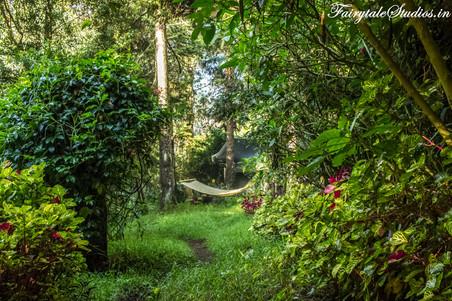 Gardens_Fern Creek Kodaikanal_Fairytale Travels (44)