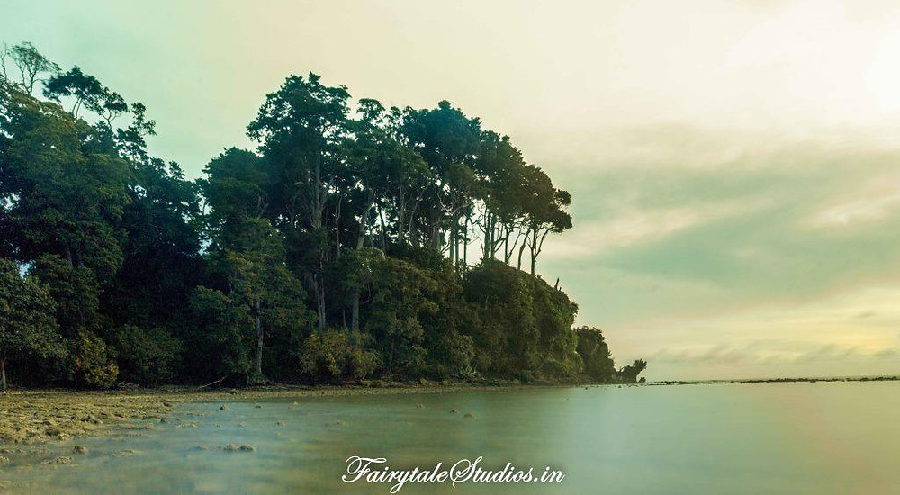 The way to Natural Bridge in Neil Island (Shaheed Dweep), Andamans