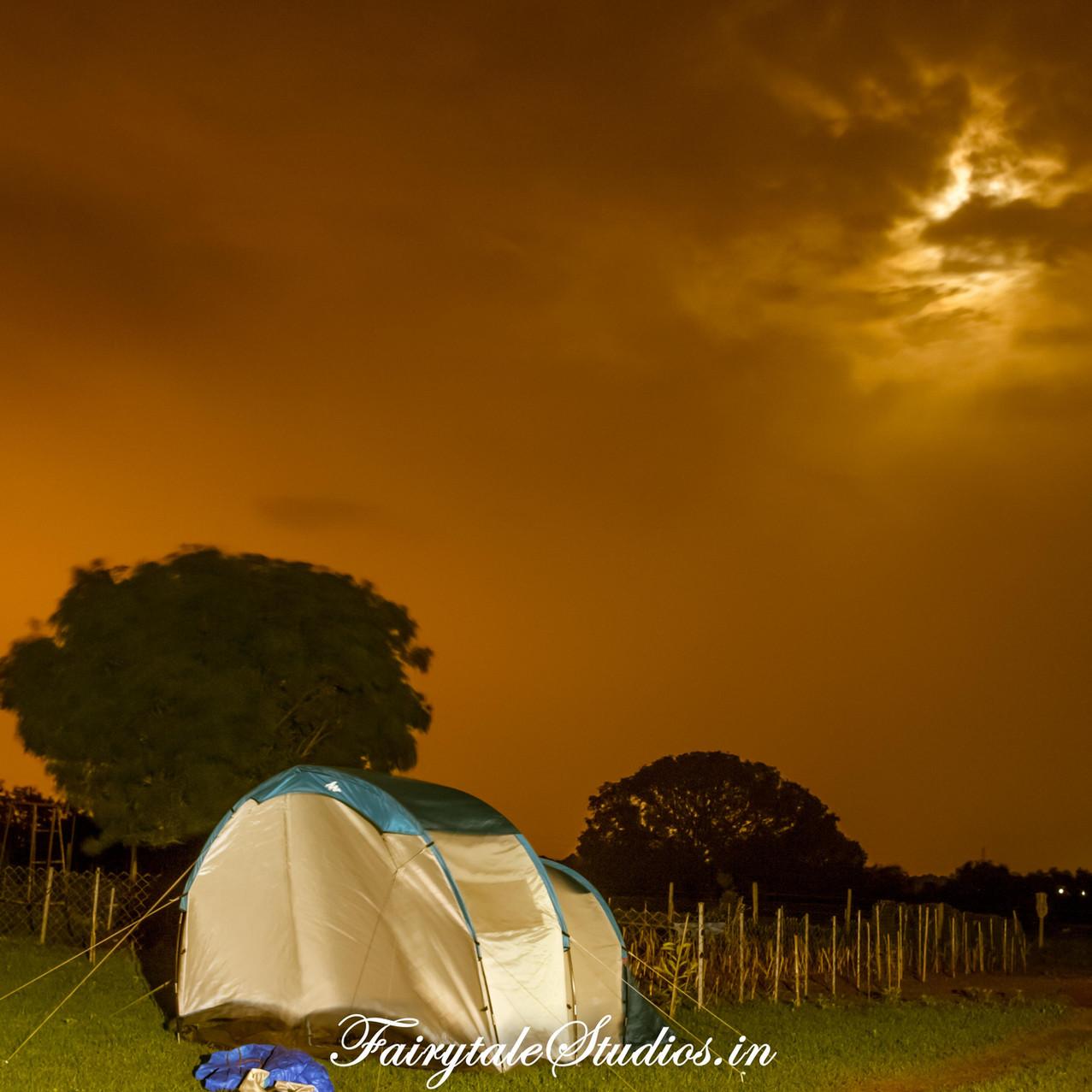 Fairytale Travels_Sids Farm (133)