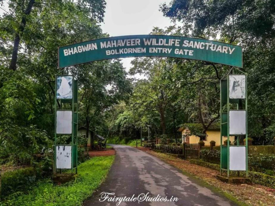 The entrance to Bhagwan Mahaveer Wildlife Sanctuary - Way to Tambdi Surla temple and waterfall