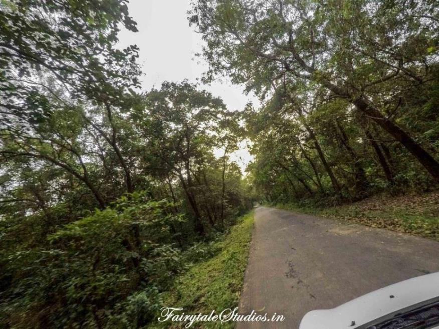 The beautiful road to Tambdi Surla temple and waterfall