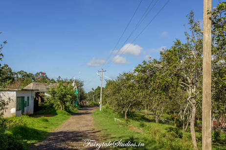 Trek_Pear County Kodaikanal_Fairytale Travels (8)