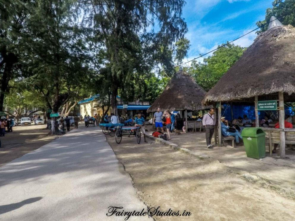 Neil Island Travel Guide_The Andaman Odyssey_Fairytale Travels (20)