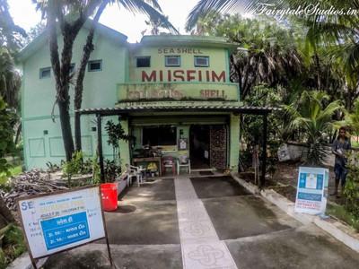 Sea Shell Museum_Diu_Fairytale Travels (9)