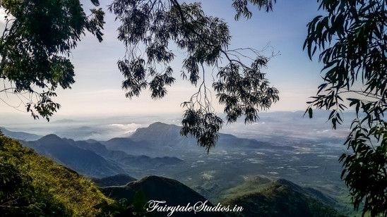 Trek_Pear County Kodaikanal_Fairytale Travels (3)