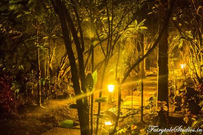 Night_Fern Creek Kodaikanal_Fairytale Travels (13)