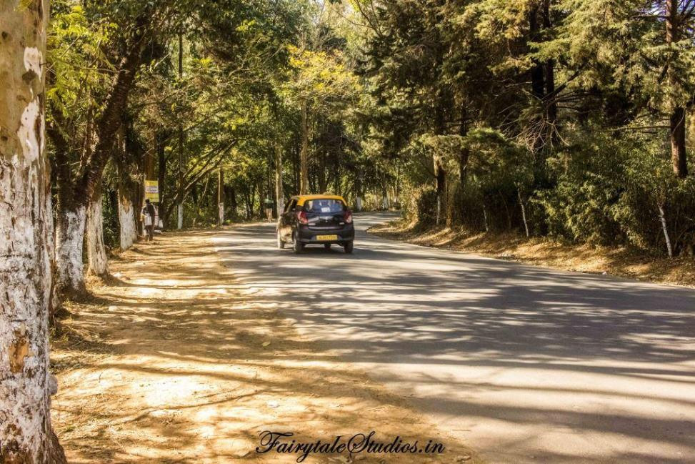 Roads throughout Meghalaya are great and taking a rented cab or self drive is the best option to go around Meghalaya