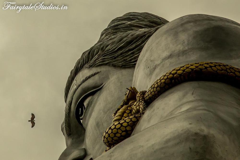 An eagle flying high above Lord Shiva's statue in Murudeshwar