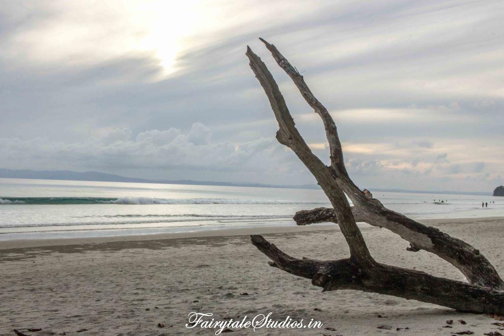 Radhanagar beach_Havelock island_The Andaman Odyssey_Fairytale Travels (4)