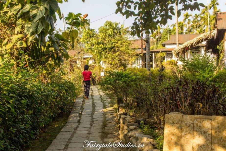 Village in morning_Mawlynnong_The Meghalaya Odyssey_Fairytale Travels
