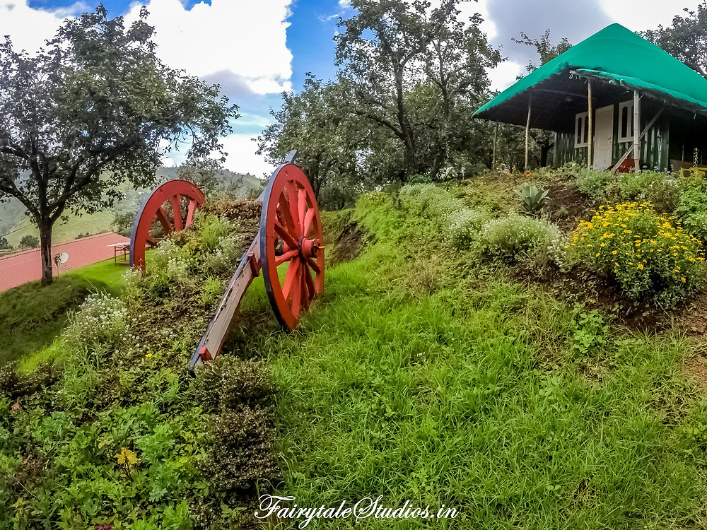 The garden is well maintained with green grasses and flowers @ The Pear County, Kodaikanal