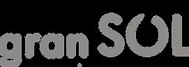 logotipo-hotel-gran-sol-solsona-1024x363