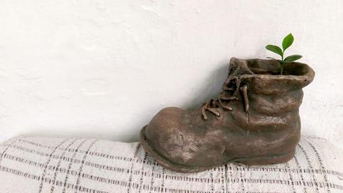Boots plant Wall-E / Ботинок с растением Валл-И