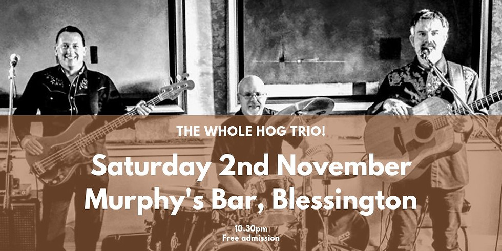 The Whole Hog Trio, live in Murphy's, Blessington
