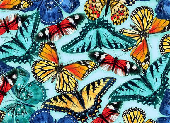 Butterfly Vortex
