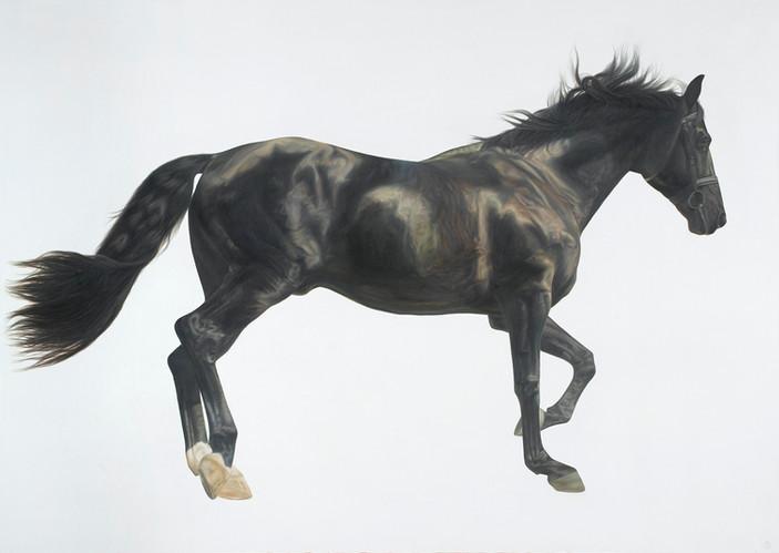 Lorenzo Oil on Canvas