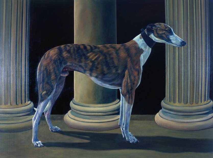 Greyhound II